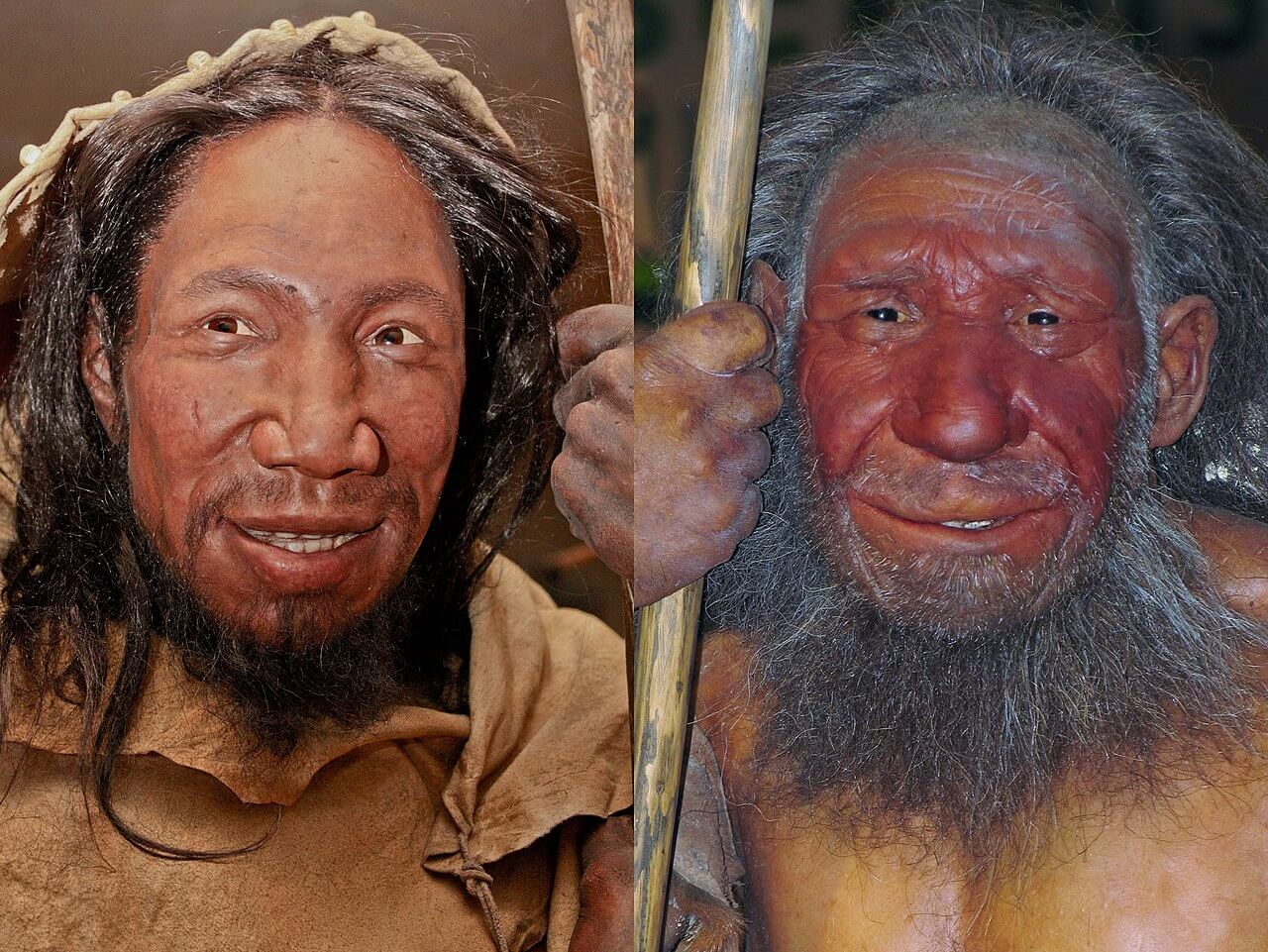 Sapien (à esquerda) e um neandertal (à direita).